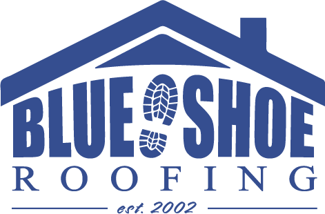blue shoe logo temp